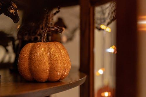 Orange Pumpkin on Brown Wooden Shelf