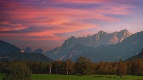 Бесплатное стоковое фото с вечер, гора, дерево