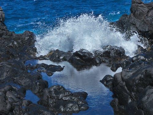 Free stock photo of beach waves, big waves, blue ocean