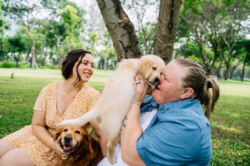 Couple with their Pet Dogs