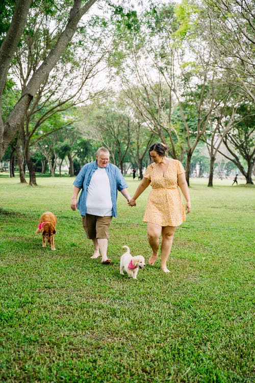 Man in Blue Polo Shirt Standing Beside Woman in Beige Dress Holding White Short Coated Dog