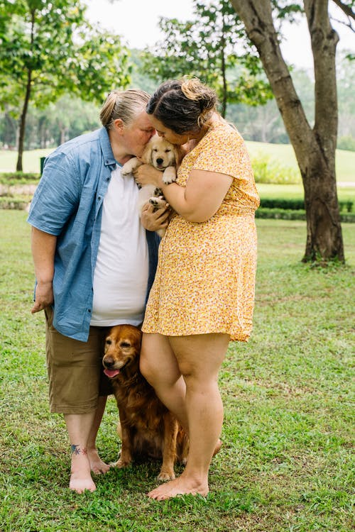 Man and Woman Kissing Brown Dog on Green Grass Field