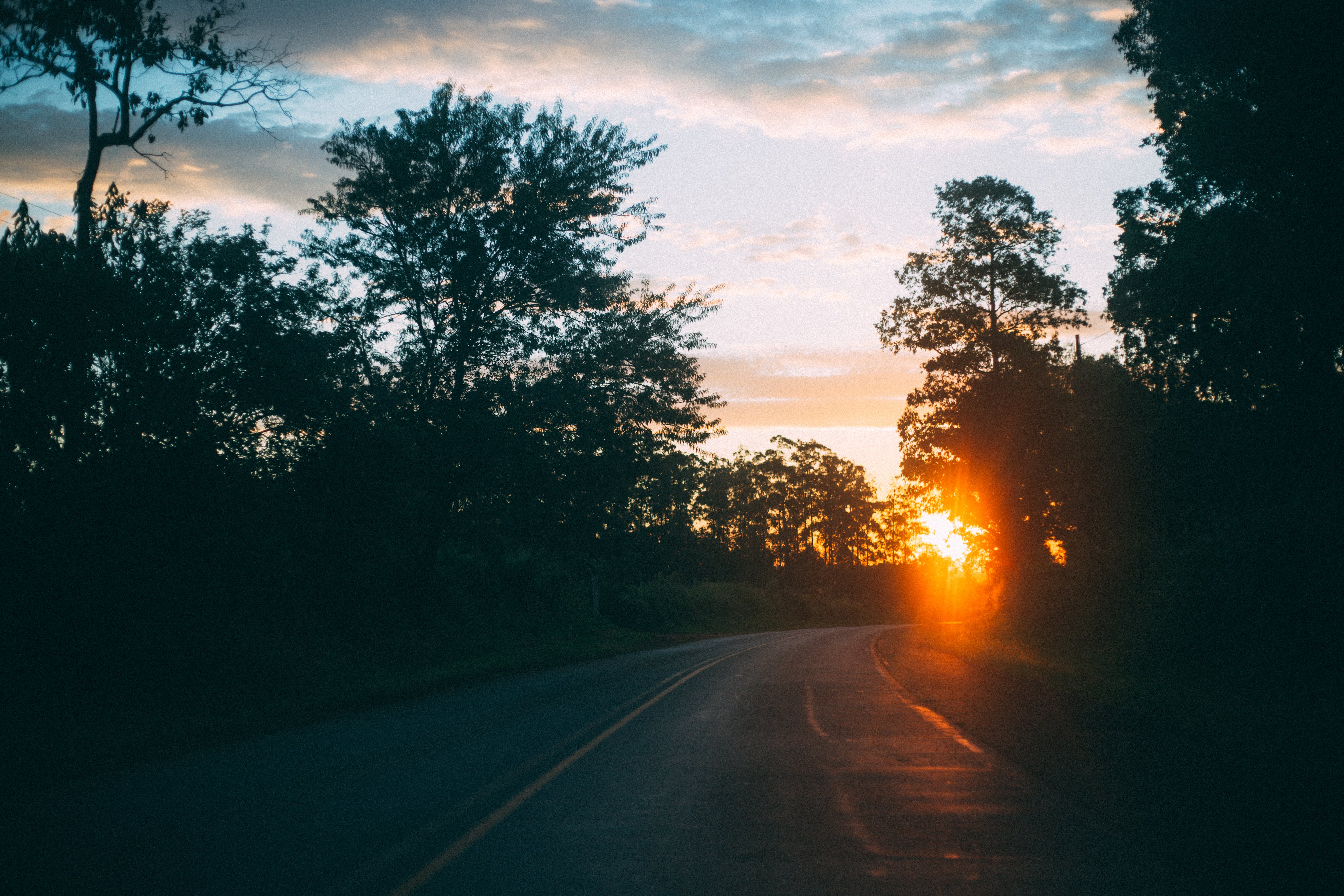 Curved Road With Trees during Sunset
