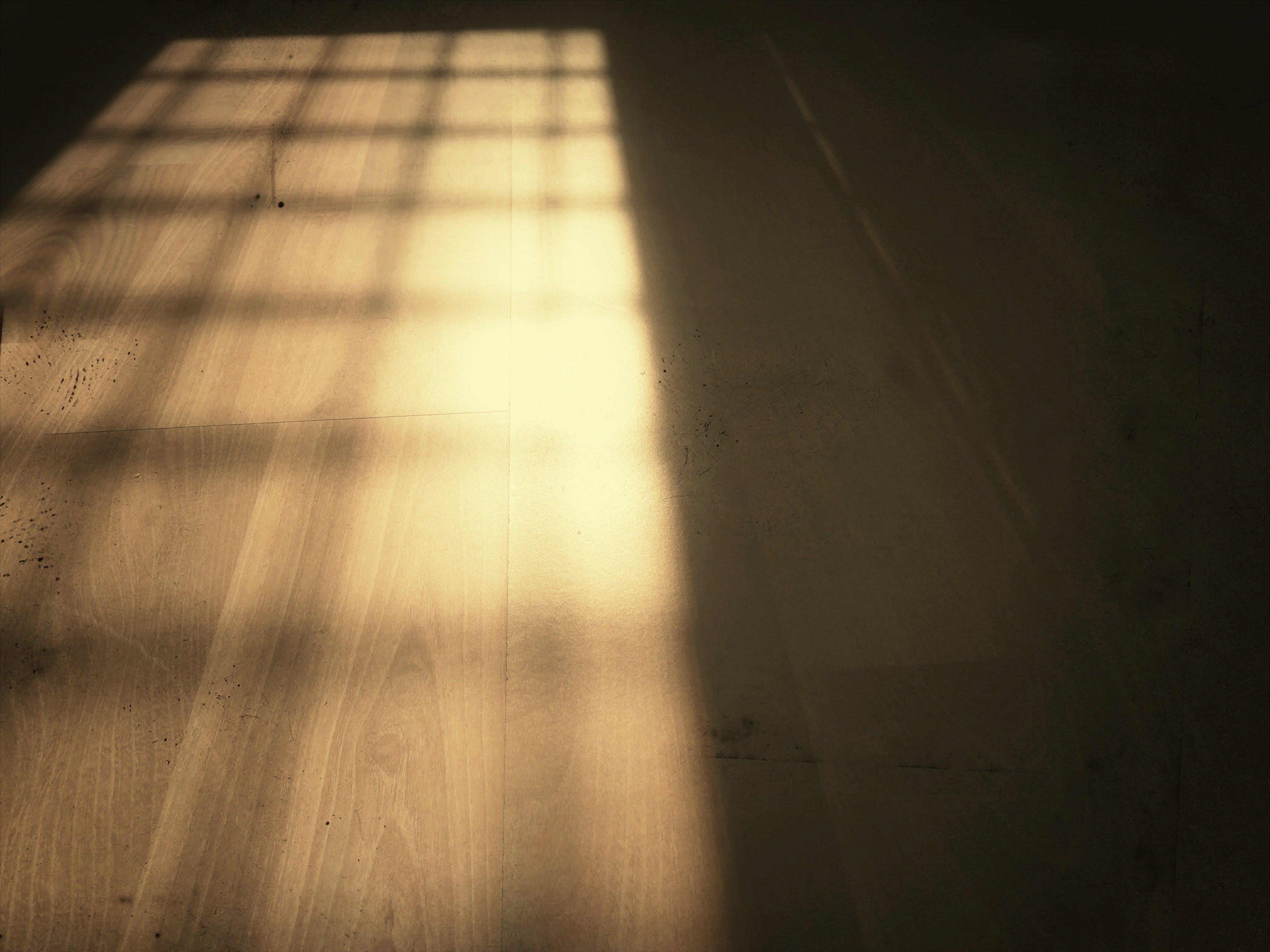 Gratis lagerfoto af blødt træ, gulv, skygge, tekstur