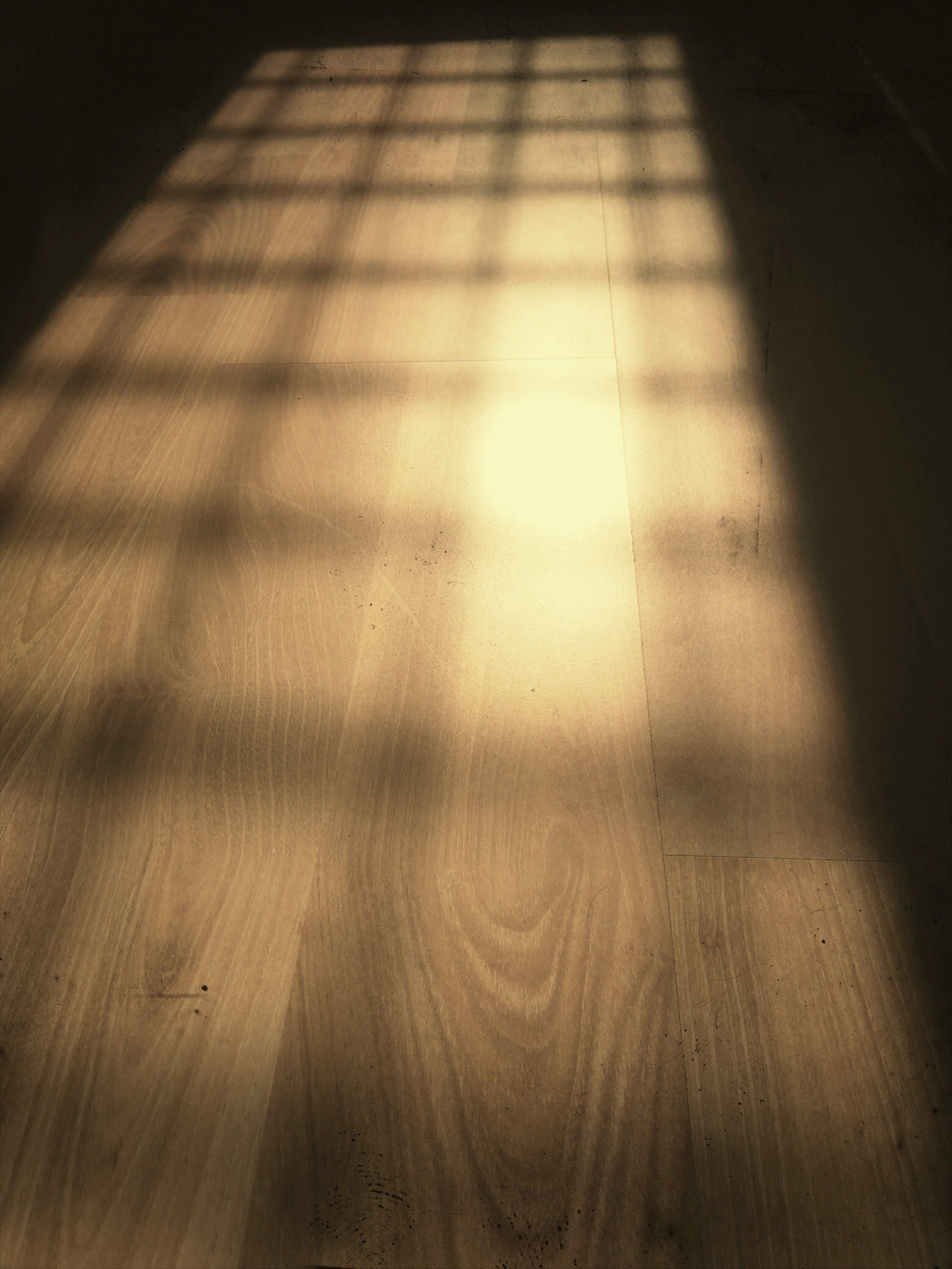 Cast of Shadow on Floor
