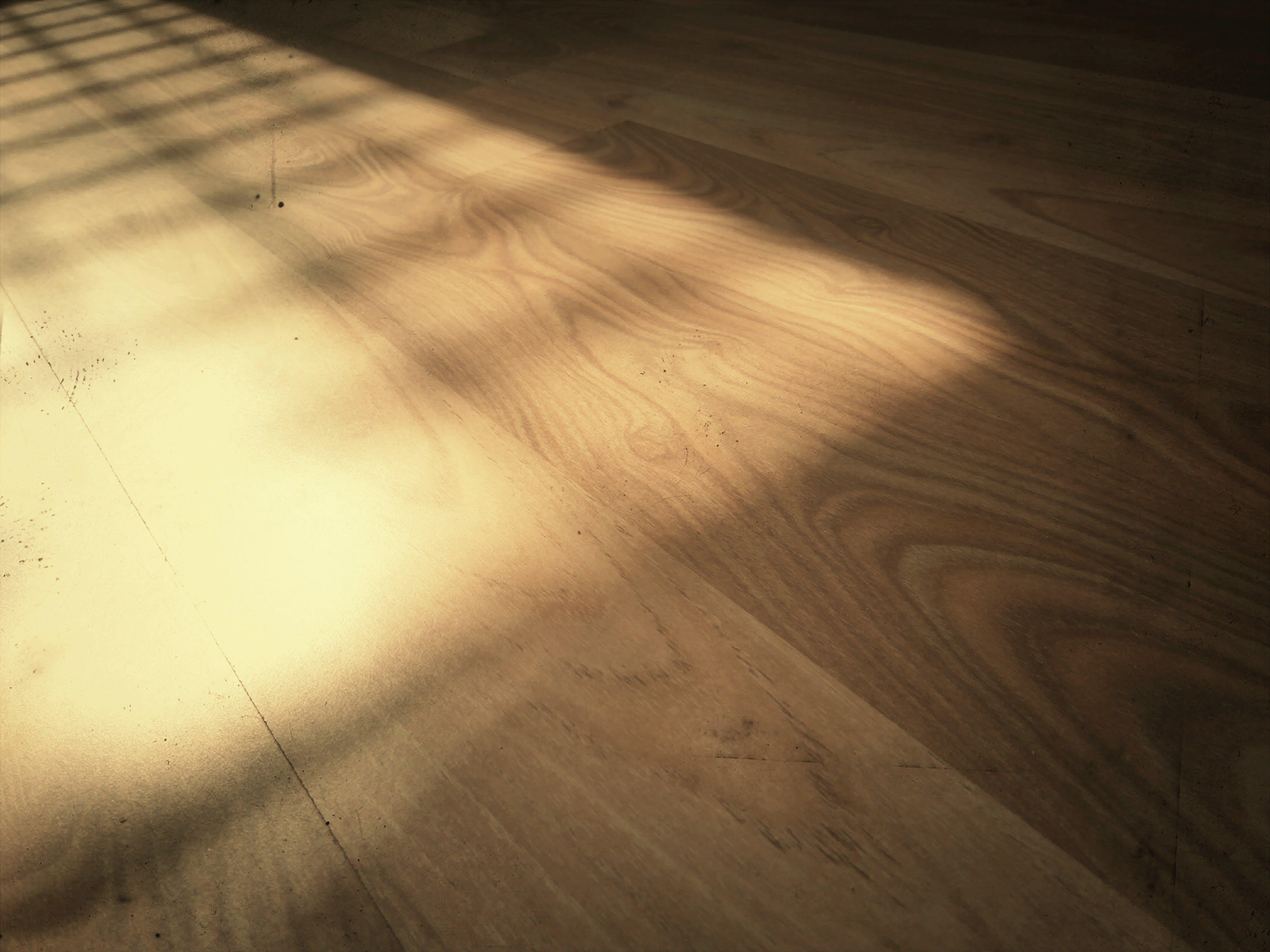 Free stock photo of wood, light, city, road