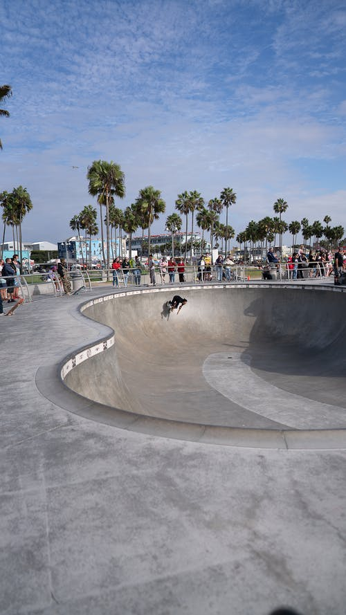 Unrecognizable skater doing stunt at skate park in tropical city