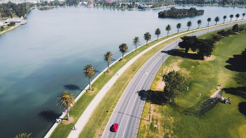 Cars on Road Near Green Trees and Body of Water