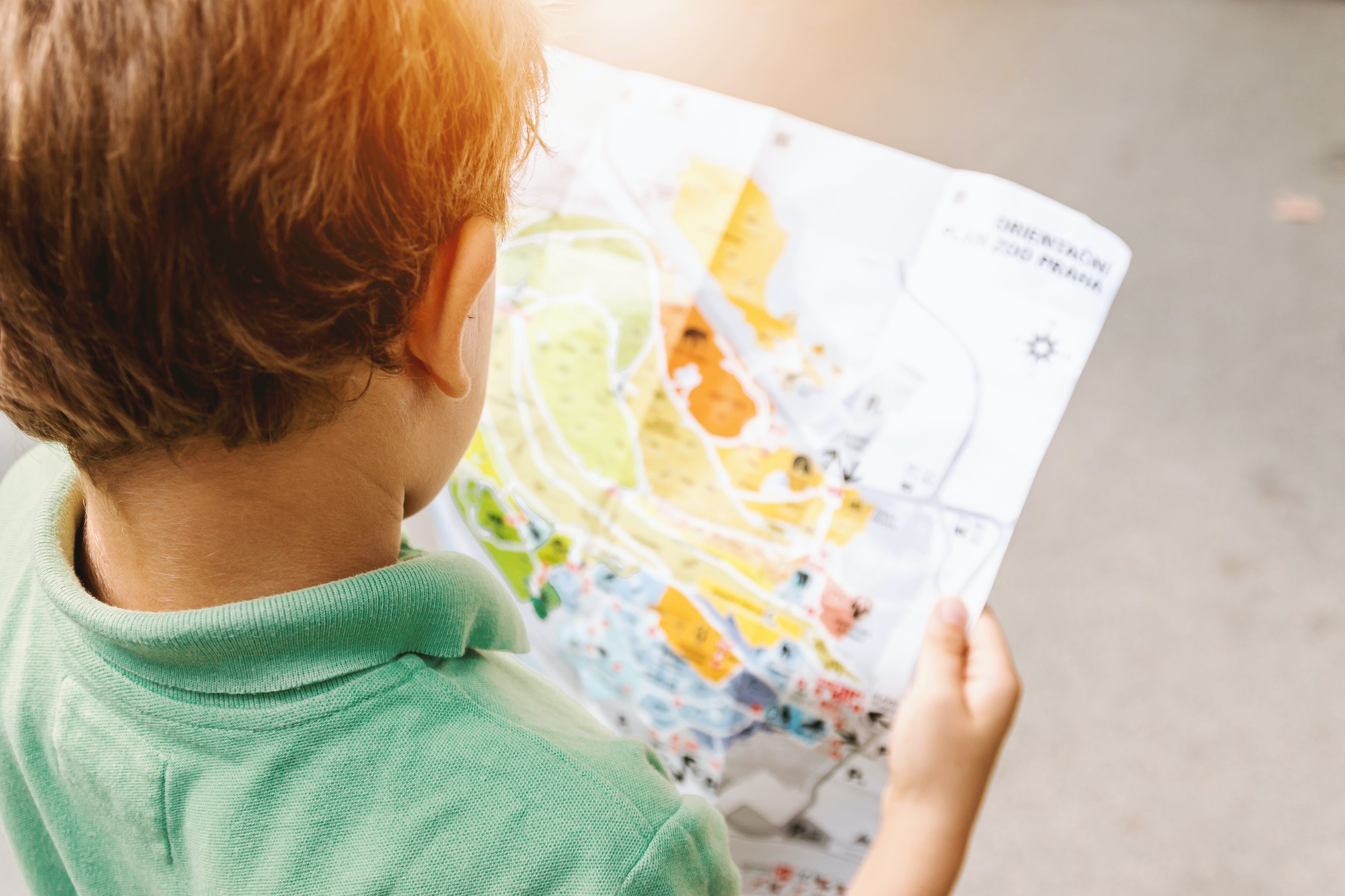 Boy Holding Map on Road