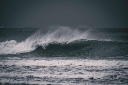 Ảnh lưu trữ miễn phí về bão táp, biển, bờ biển