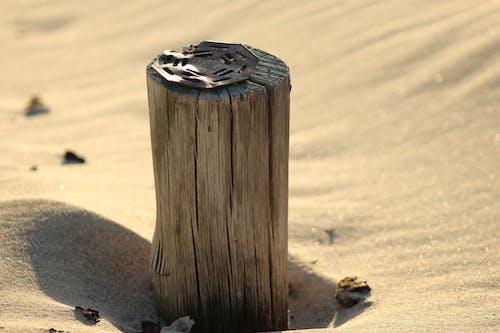 Ảnh lưu trữ miễn phí về ánh sáng mặt trời, bờ biển, cát