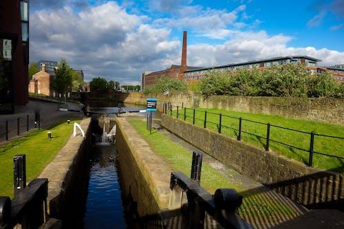 Foto d'estoc gratuïta de aigua, arbres, cel blau, fàbrica
