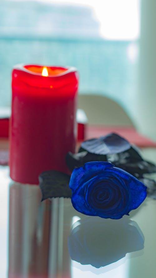 浪漫, 燭火, 藍花, 蠟燭 的 免费素材照片