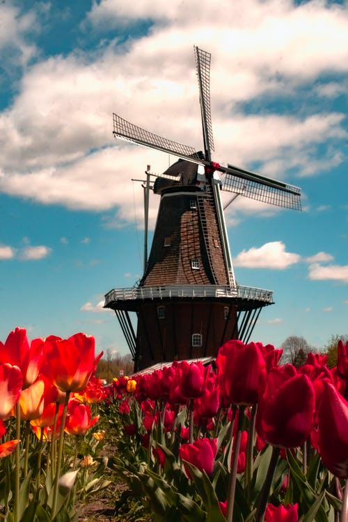 Black Windmill Under Blue Sky