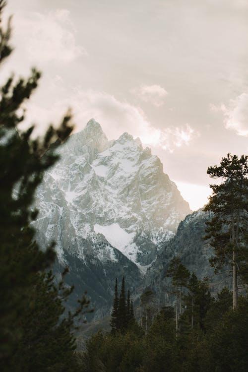 Berggipfel Mit Schnee Bedeckt