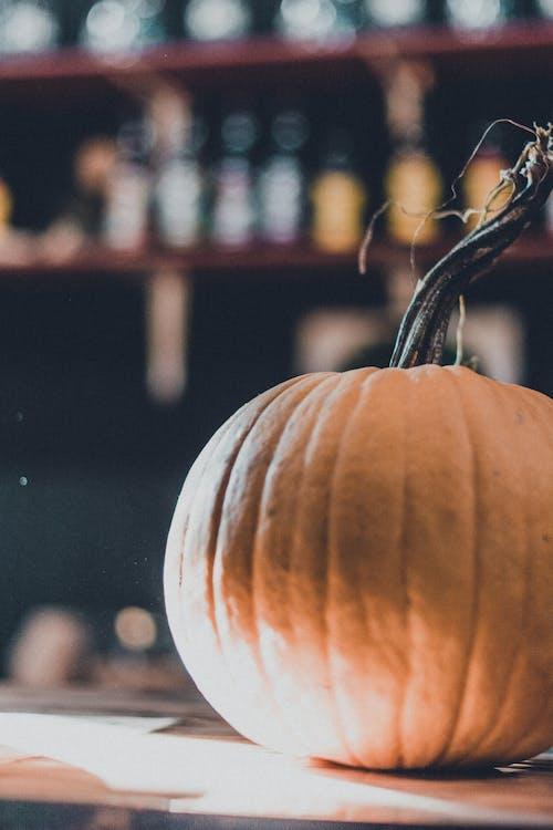 White and Brown Pumpkin in Tilt Shift Lens