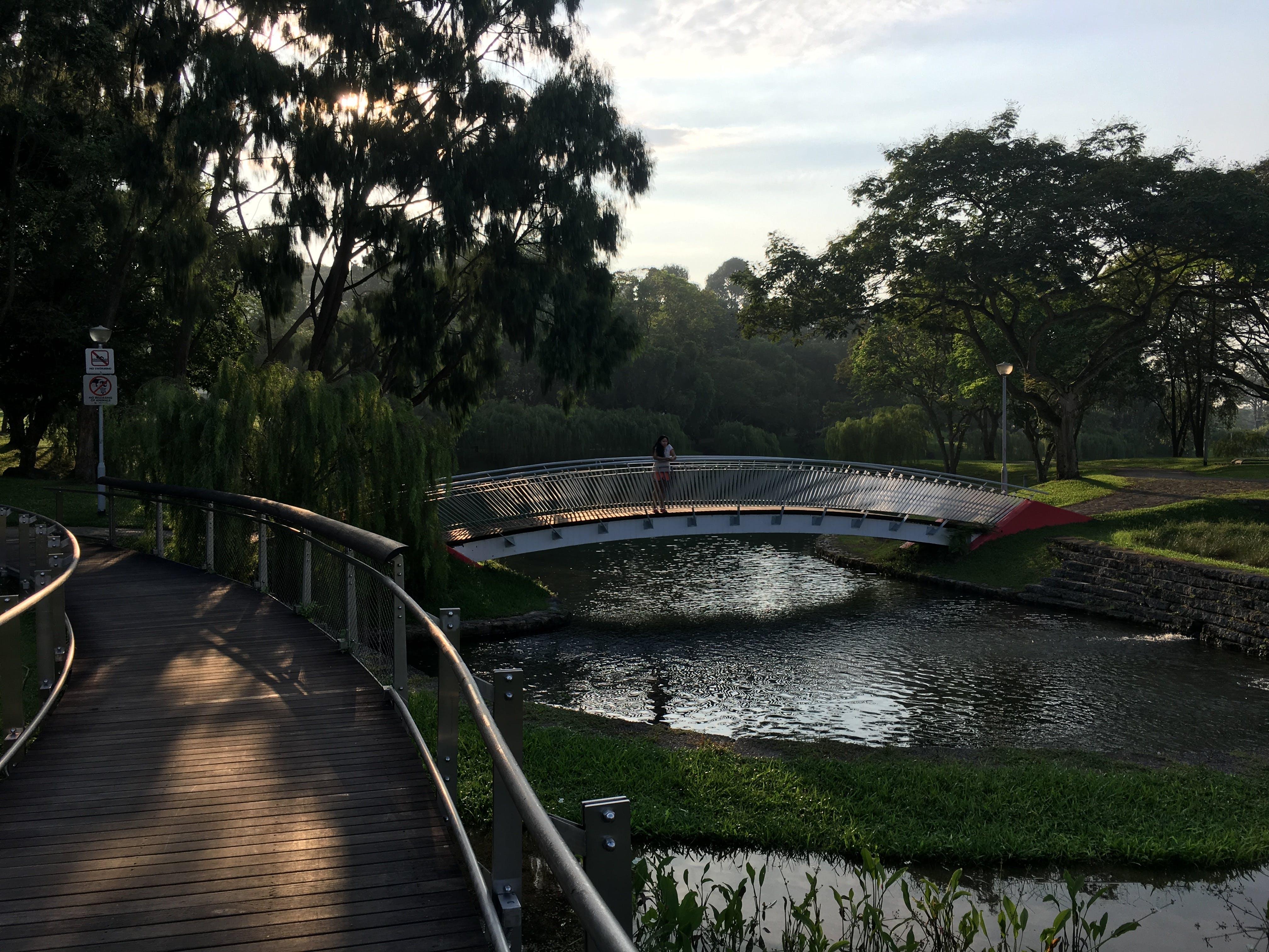 Free stock photo of bridge, garden, park, shadow