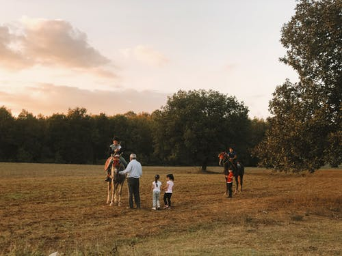 People Having Fun on Grass Field