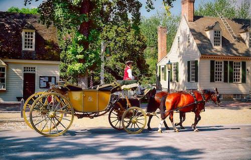 威廉斯堡, 歷史, 殖民, 馬車 的 免費圖庫相片