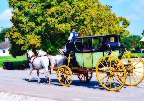 地方, 威廉斯堡, 歷史, 馬車 的 免費圖庫相片