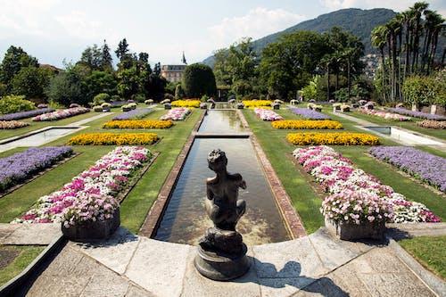Black Statue Near Flowers