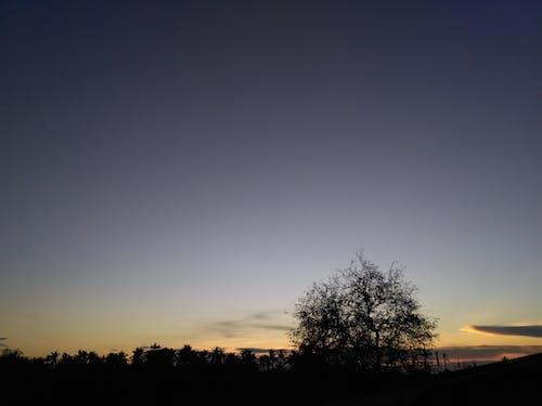 Free stock photo of evening sky, landsape, natue, sunlight