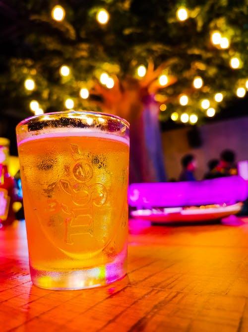 Free stock photo of beer, happy hour, no beer no life