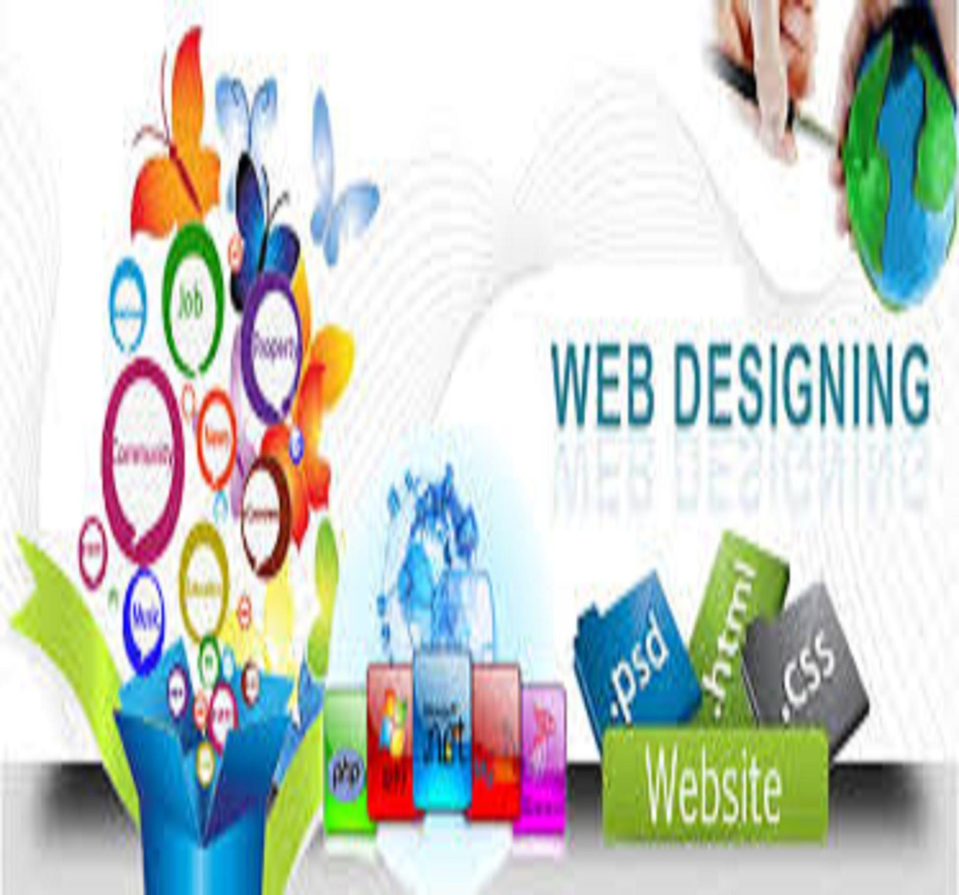 Website designer company usa