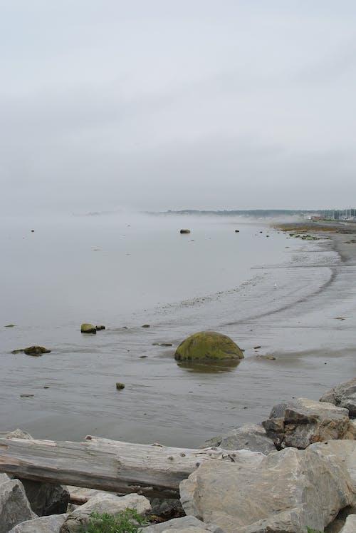 Бесплатное стоковое фото с берег, вода, лето