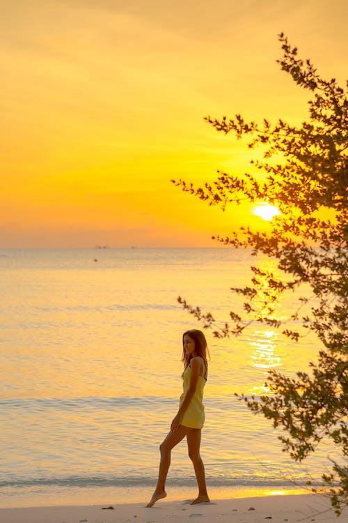 Fotobanka sbezplatnými fotkami na tému exteriéry, leto, more