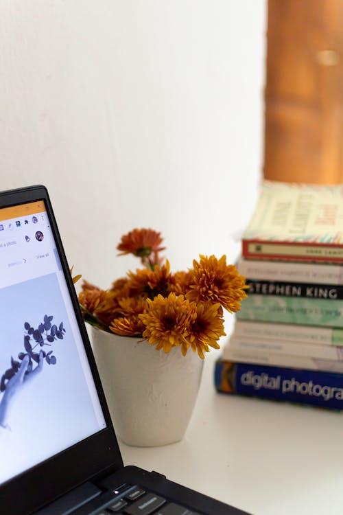 Gratis stockfoto met bloemen, boeken, bureau