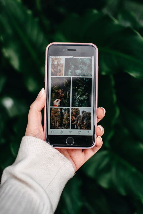 Orang Memegang Iphone 6 Perak Dengan Kotak Coklat