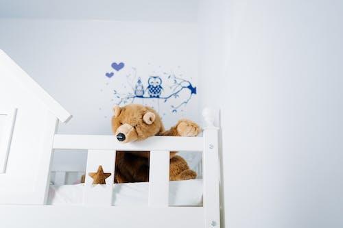 คลังภาพถ่ายฟรี ของ ของเล่น, ของเล่นตุ๊กตา, ตุ๊กตาสัตว์