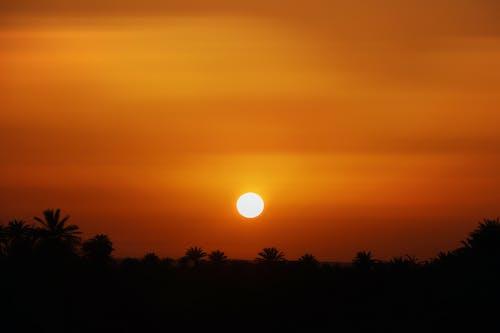 akşam karanlığı, arkadan aydınlatılmış, doğa içeren Ücretsiz stok fotoğraf