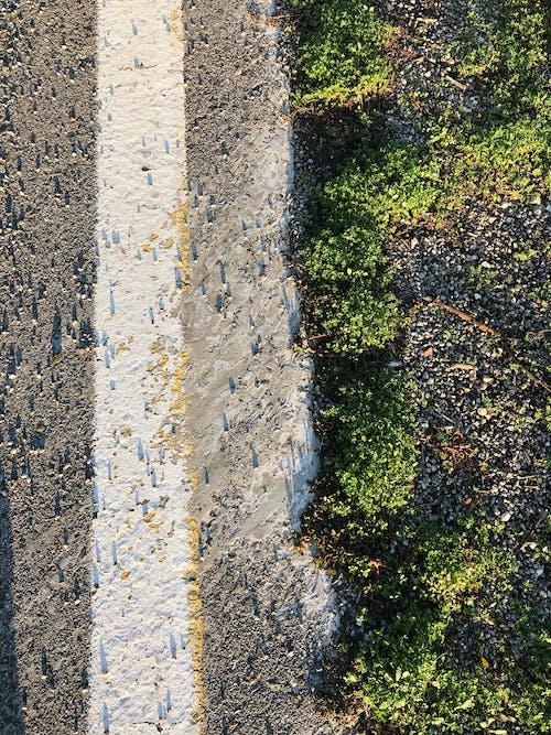 Immagine gratuita di autunno, concettuale, lato strada