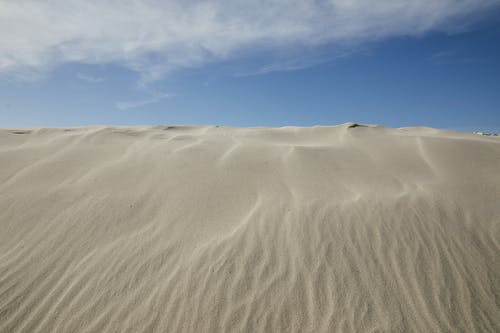 Sandy dunes in empty desert in windy hot weather under bright blue sky with fluffy clouds