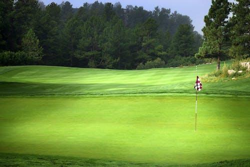 Základová fotografie zdarma na téma golf, golfové hřiště, kostkovaný, špendlík