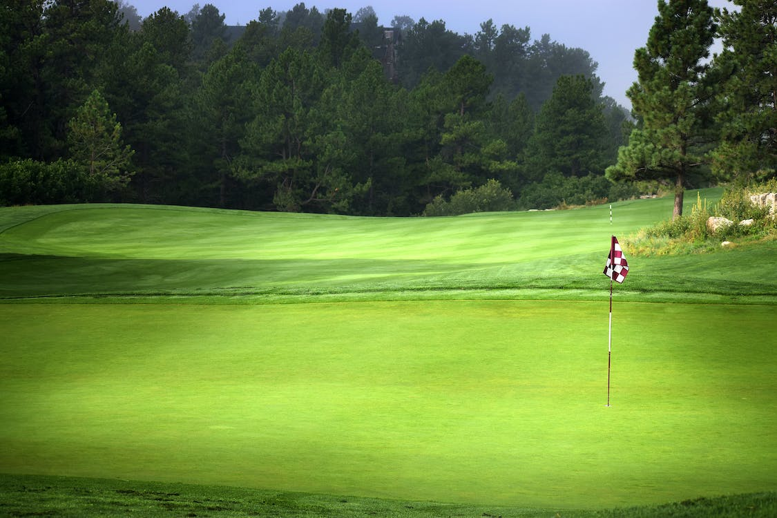 Free stock photo of checkered, golf, golf course