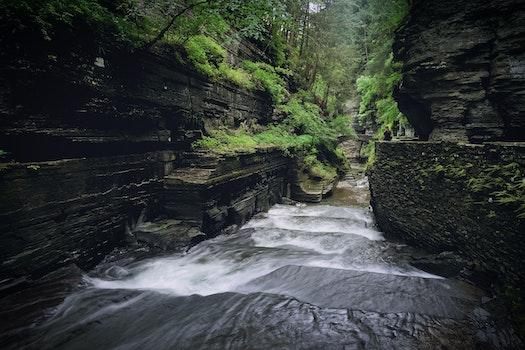 Free stock photo of nature, water, creek, stream