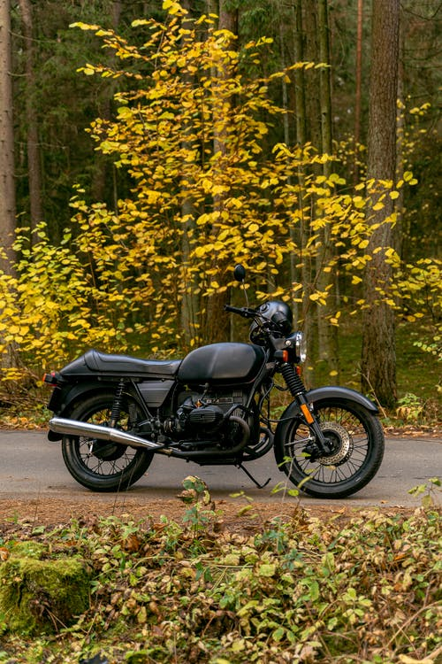 Black Motorcycle Parked Beside Yellow Leaf Trees