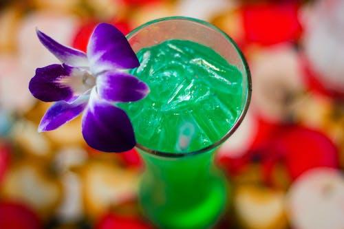 Fotobanka sbezplatnými fotkami na tému alkohol, koktail, kokteil, kvet