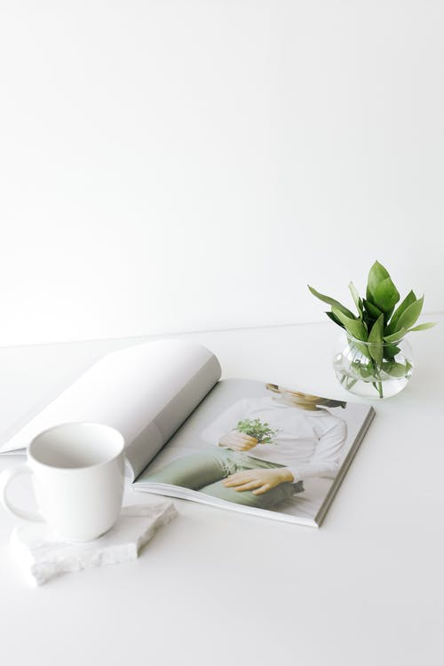 Opened magazine on desk near cup and plant leaves