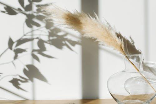 Vas Dengan Rumput Pampas Diletakkan Di Atas Meja