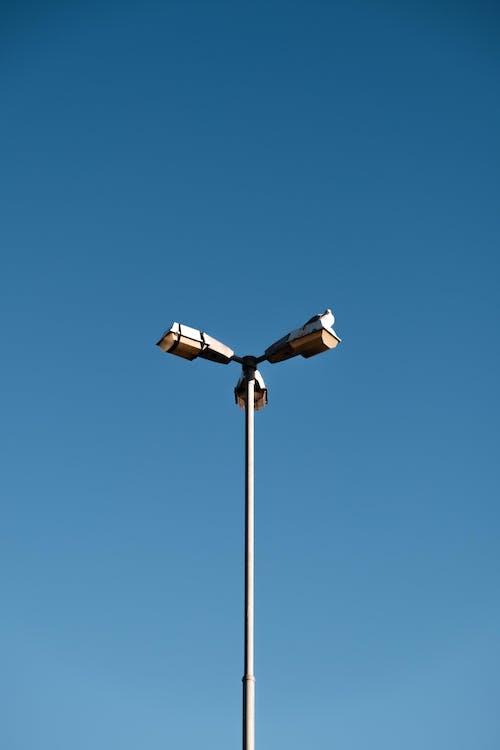 A Streetlight Lamppost