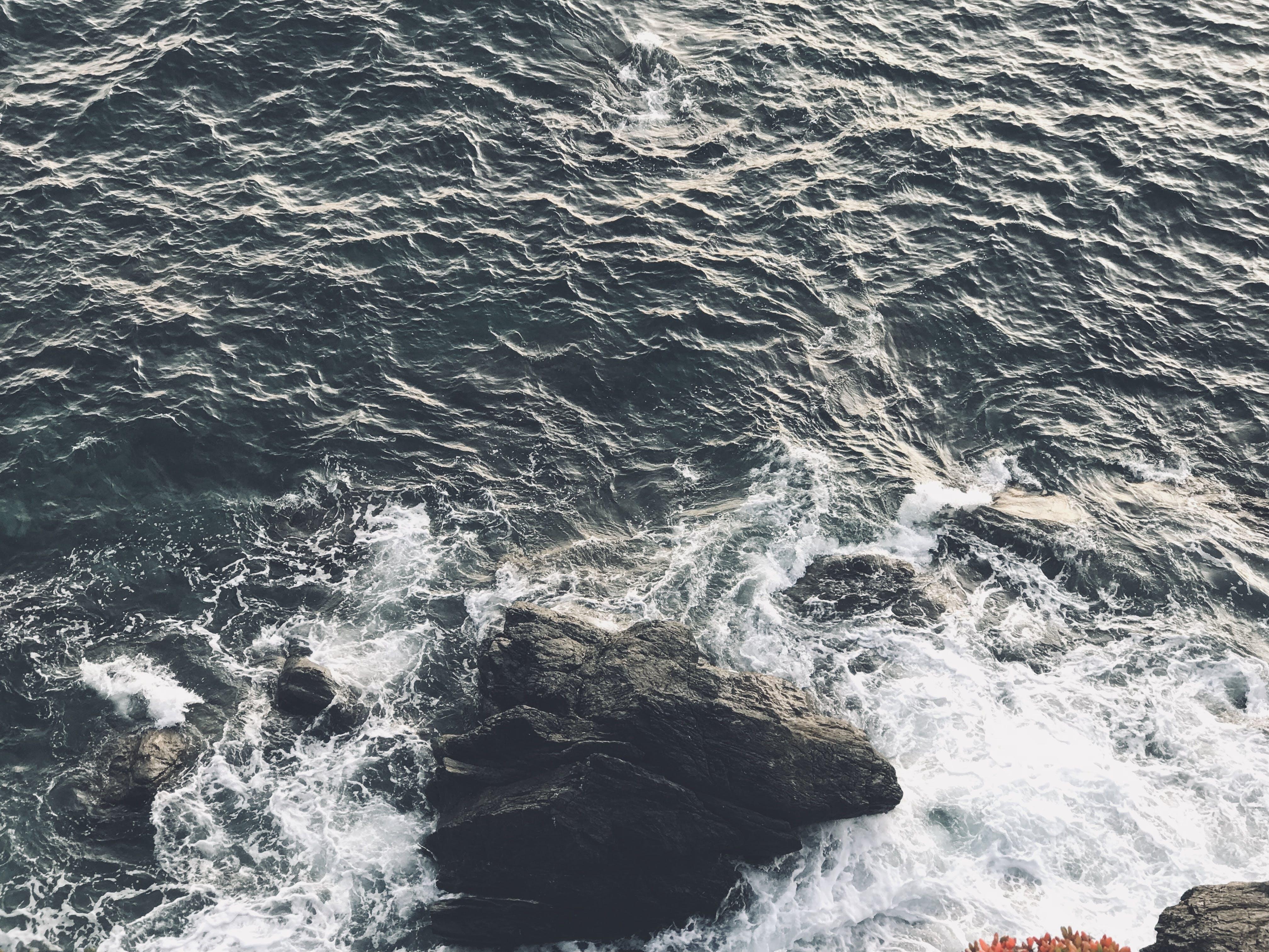 Free stock photo of ocean, rocks, waves