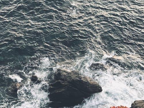 Photos gratuites de cailloux, faire signe, océan