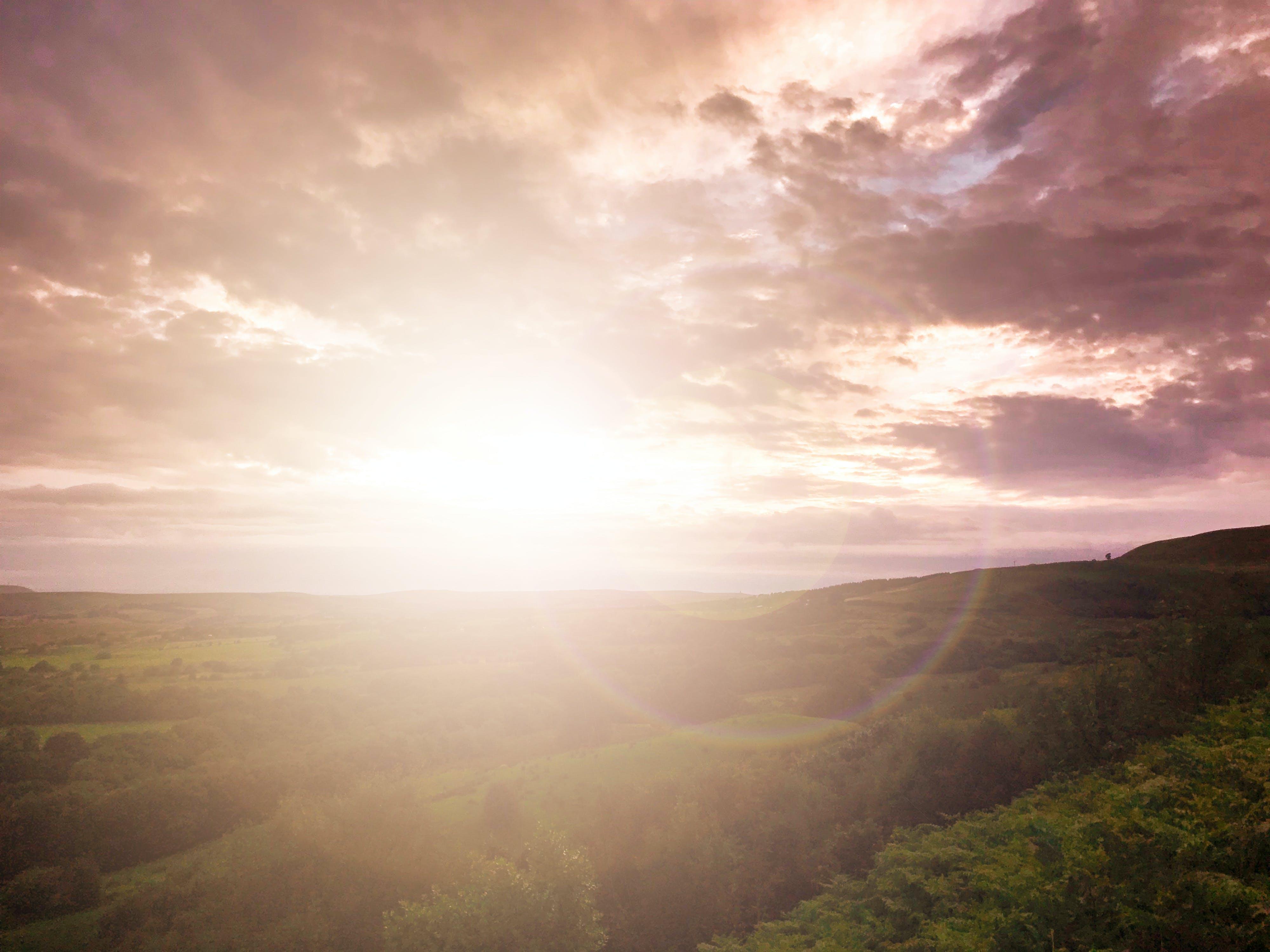 Free stock photo of bush, camera lens, cloud, evening sun