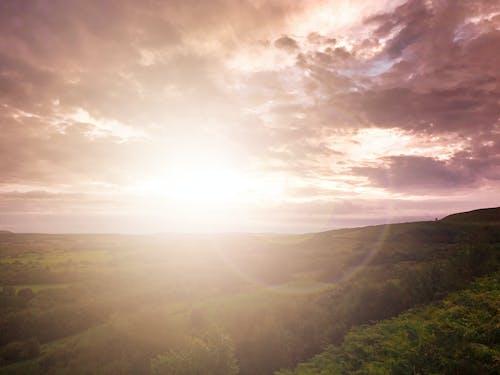 Kostenloses Stock Foto zu abendsonne, bäume, busch, glühen