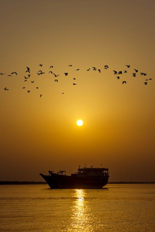 Základová fotografie zdarma na téma cestování, člun, krajina, léto