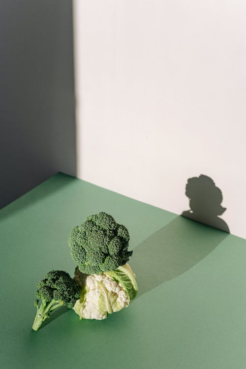Green Leaf on Green Table